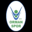 ormanspor